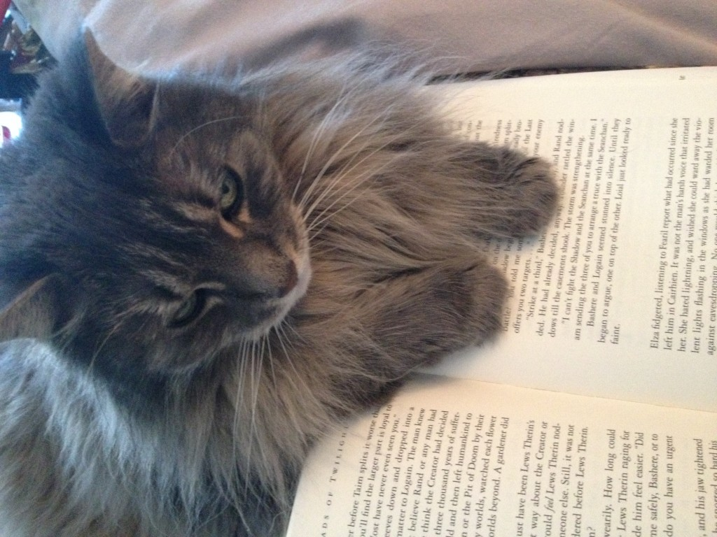 Hal likes to either use a book as a pillow or as a face scratcher.